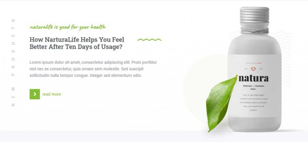 NaturaLife WordPress theme's layout