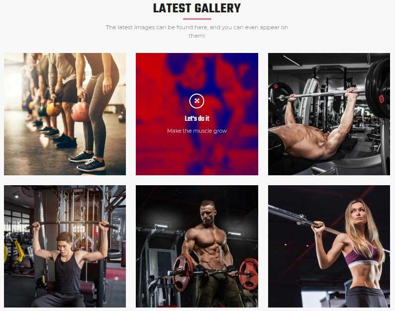 VUP - Fitness Center Gallery