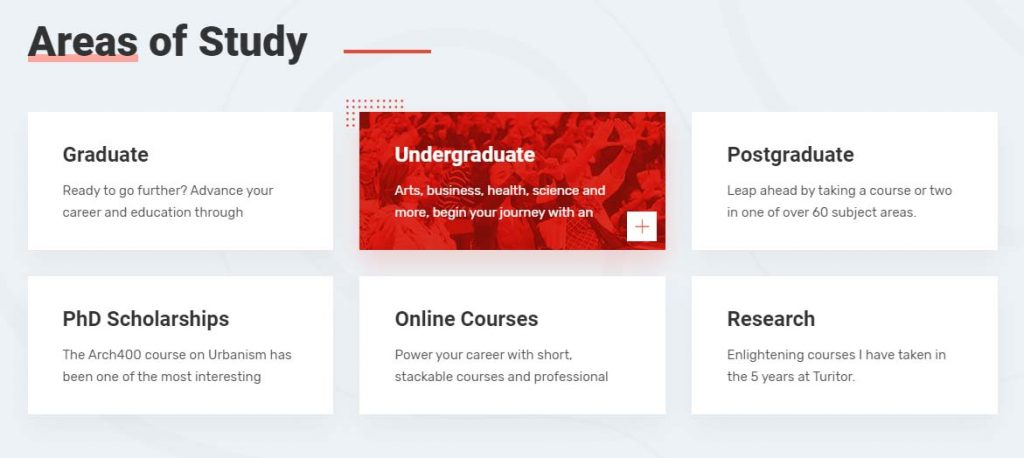Example of area of study section in a university website