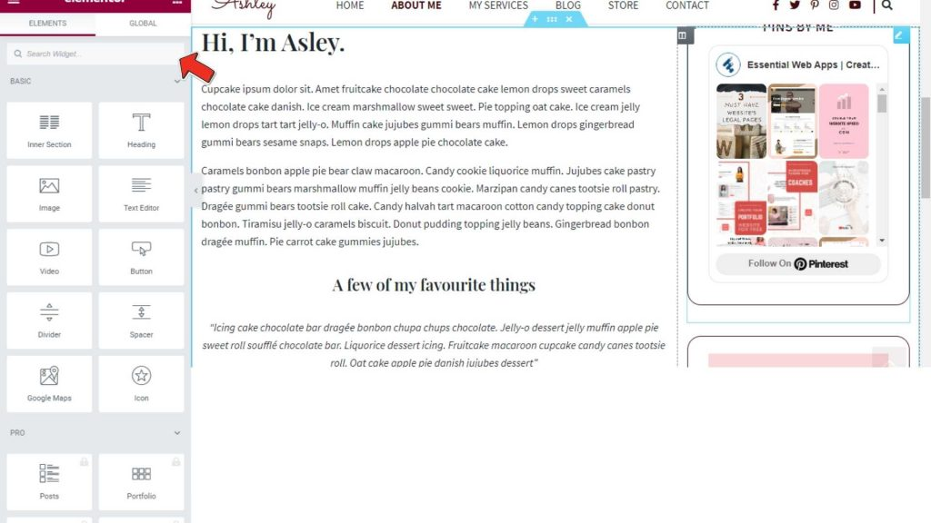 About Widgets Search - Ashley WordPress Theme
