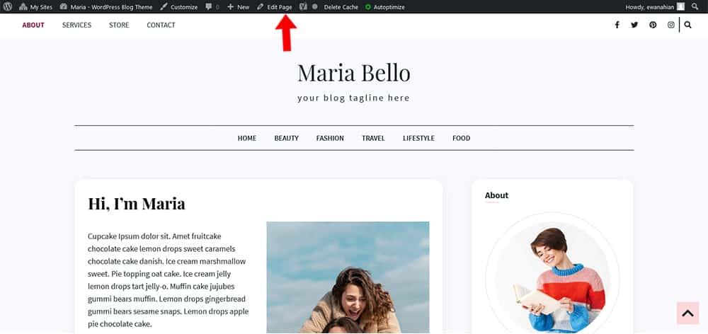 Maria WordPress theme About Page edit